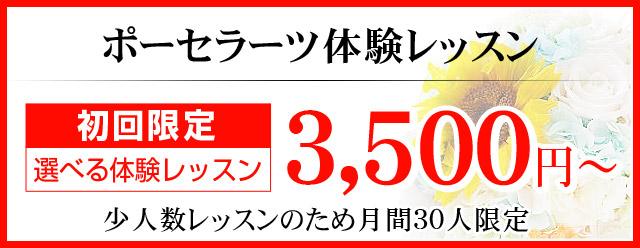 ポーセラーツ体験レッスン 初回限定 選べる体験レッスン 3,500円